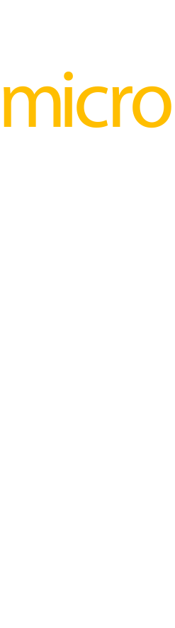 MICRO ACT C logo